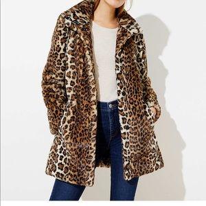 Loft Leopard coat NWT